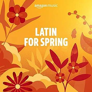 Spring Latin