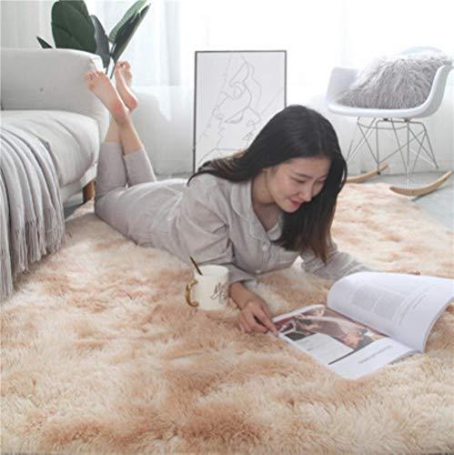 Europese lang haar mode slaapkamer tapijt erker bed mat wasbare persoonlijkheid deken gradiëntkleur woonkamer tapijt, 2,40x60cm