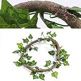 吸盤付き両生類の水槽の装飾のための複数の機能爬虫類の装飾(Rattan + creeper leaf)