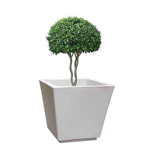 Yuccabe Italia Yuccabe FOXB GK White 12 Inches Planter
