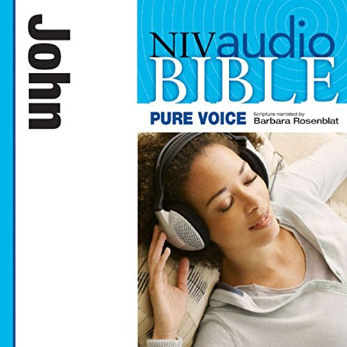 NIV New Testament Audio Bible, Female Voice Only: John cover art