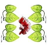 Molain 4 piezas hoja Betta Fish Bed Pad Leaf Betta Fish Hamaca ligera y realista lugar de descanso cómoda decoración para pecera acuario decoración para Betta hábitat cría descanso