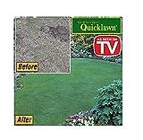 Gardener's Choice As Seen On TV Quicklawn 4 Season Evergreen Grass Seed - 2 Lb. Bag (1000 Sq Ft)