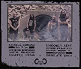 Zoom IMG-1 desolate gods
