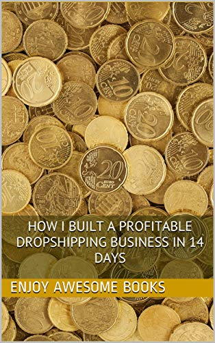 How I Built a Profitable Dropshipping Business in 14 Days (English Edition)