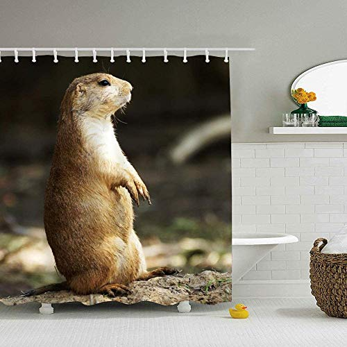DINGQING Shower Curtain Animals Prairie Dog Water-Repellent Bathroom Curtains Marriage Gifts for Men and Women