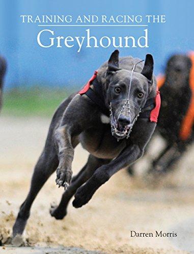 Training and Racing the Greyhound (English Edition)