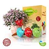 Watering Globes- Mushroom Terracotta, 3 Self Watering System Spikes, Automatic Plant Waterer Irrigation Drippers, Plant Watering Wands Indoor Plants, Hanging Pots Outdoor (Mushrooms, Red Green Blue)