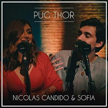 Pug Thor (Ao Vivo)