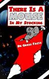 There Is A Mouse In Your Stocking (English Edition)