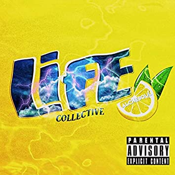 Life Collective I: Flat Bush Stories