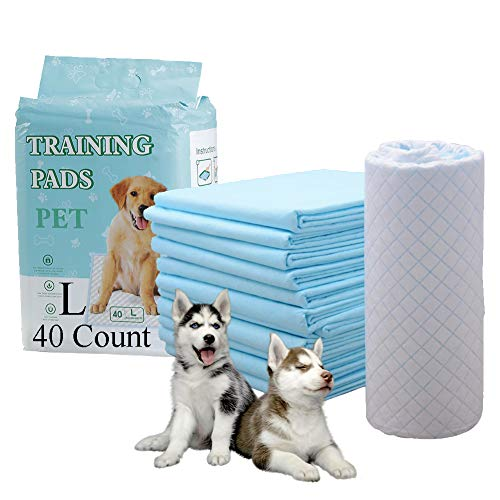 HI FINE CARE Dog Training Pad, Pet Pee Pads Puppy Cat Potty Pads Leak-Proof Quick Dry Disposable Super Absorbent (24in×24in)