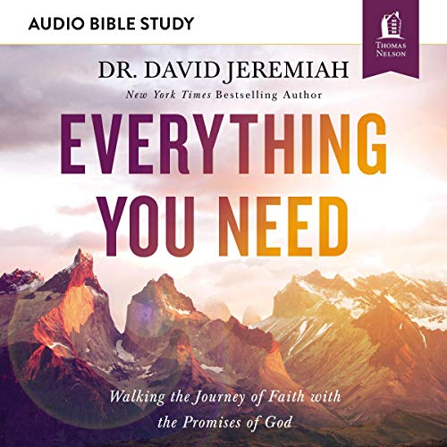 Everything You Need: Audio Bible Studies audiobook cover art