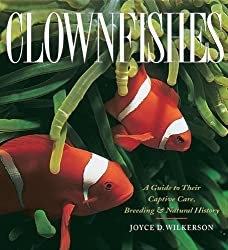 Breeding clownfishes