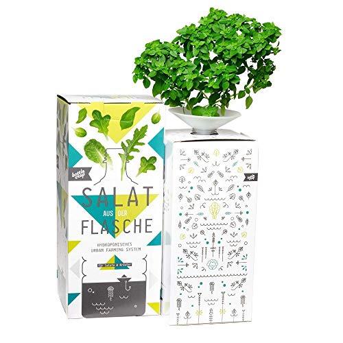 Bottlecrop - Kleinblättriges Basilikum | Salat aus der Flasche | Anzuchtsystem | Urban Farming | Hydrokultur | Fensterkräuter