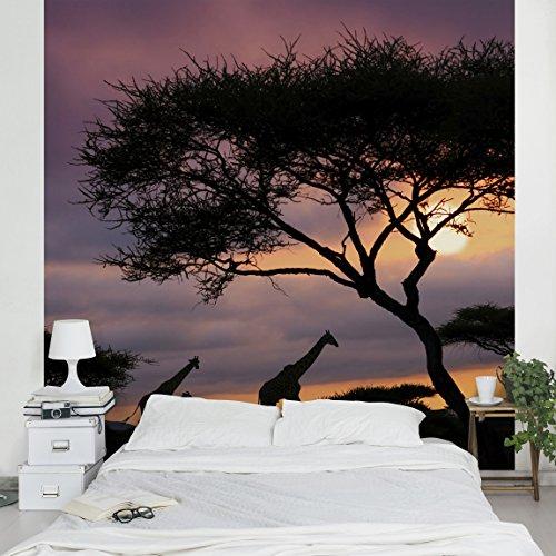 Apalis Vliestapete Safari in Afrika Fototapete Quadrat | Vlies Tapete Wandtapete Wandbild Foto 3D Fototapete für Schlafzimmer Wohnzimmer Küche | Größe: 336x336 cm, schwarz, 97972