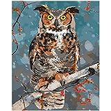 TWEN-520 Malen nach Zahlen DIY40x50cm Nette Pflaumeneule auf einem Zweig Tier Leinwand Hochzeitsdekoration Kunst Bild Geschenk