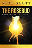 The Rosebud: Growing in the Light