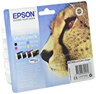 EPSON Cheetah Ink Cartridge for Epson Stylus SX600FW Series - Assorted