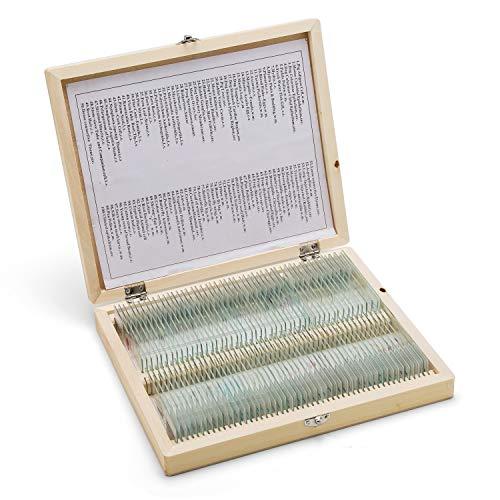 SWIFT Optical 100 Stück Mikroskop Dauerpräparate in Holzbox Objektträger Set Lern Experiment Set für Grundlegende Biologische Ausbildung Folien Tier Pflanzen Insekten Gewebe Proben