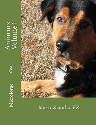Animaux Volume 4 (French Edition)