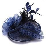 Horquillas Accesorios para mujeres Peinado Sombrero de boda Fascinator Fascinator Novia Voilette Malla Elegante Diadema para cóctel Ceremonia de Derby Fiesta de fotógrafo Fiesta de disfraces (turquí)