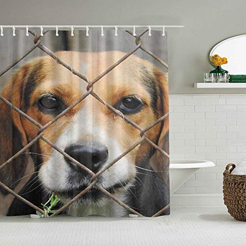 Polyester Fabric Shower Curtain Set with 12 Plastic Hooks Decorative Bath Curtains,Beagle Dog Imprisoned Kennel,72x72 inches