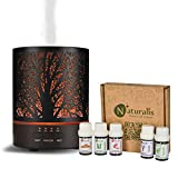 Naturalis Essence of Nature Metal Body Cool Mist Ultrasonic Aroma Diffuser & Humidifier with free Top 5 Natural Essential Oil, 4 Timer Setting, 2 mist modes & 7 Colour LED Lights (300 ML Tank Capacity)