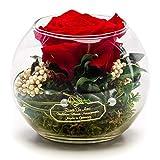 Rosen-Te-Amo – Konservierte ewige rote Rose in der Kugel Vase, Blumenstrauß im Glas mit Liebe gefertigt Deko-Pflanzen; Infinity Deko-Blumen