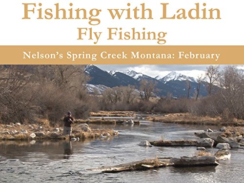 Nelson's Spring Creek Montana: February