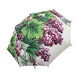 NC Paraguas Plegable Compacto, Pintura Floral clásica del pájaro del Arte de China, Paraguas fácil de Llevar de la Lluvia del Viaje