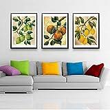 XLXZZ Vintage Früchte Poster Apfel Zitrone Leinwand