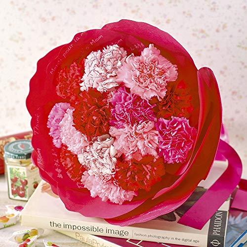 日比谷花壇 母の日 カーネーションの形をした花束「ペタロ・カーネーション メルシー」
