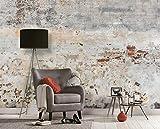 Wall-Art - Papel pintado 3D, diseño rústico de piedra, tamaño XXL, hormigón, color gris, salón, piedra de cemento, 3,50 m x 2,55 m