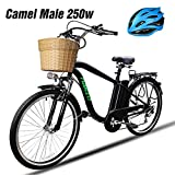 Electric Bicycle - Best Reviews Guide