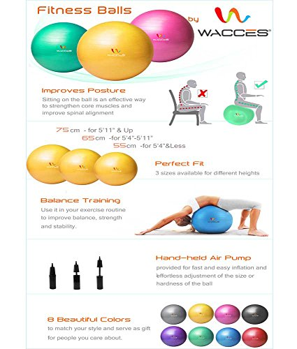 Wacces Professional Exercise, Stability and Yoga Ball for Fitness, Balance & Gym Workouts- Anti Burst – Quick Pump Included (Black, 55 cm)
