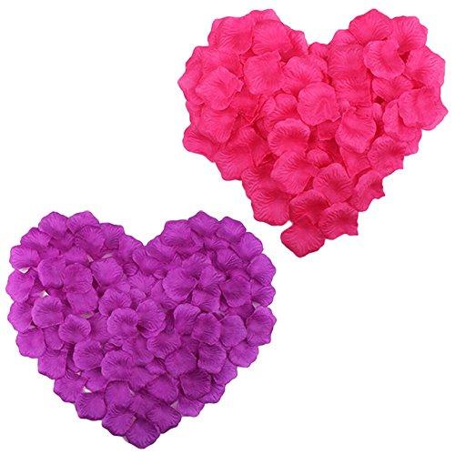 1000 purple rose petals - 3