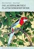 AUSTRL. PLATTSCHWEIFSITTICHE - Vogels