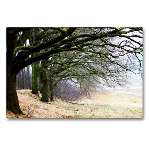 CALVENDO Premium Textil-Leinwand 90 x 60 cm Quer-Format Weyerberg/Worpswede, Leinwanddruck von Fotokunst Ulrike Adam