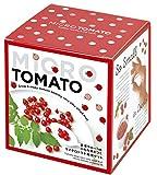 聖新陶芸 マイクロトマト栽培セット レッド サイズ:約W11.5 D11.5 H12.3 GD-903
