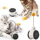 猫 おもちゃ バランススイング車キャットニップ 知育玩具 ペットの運動チェイスプレイび ストレス解消 早食い防止 運動不足解消 子猫のスイングおもちゃ
