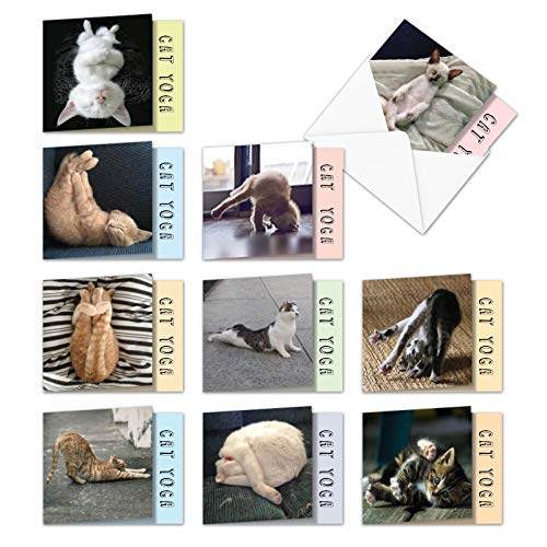 The Best Card Company - 10 Blank Yoga Note Cards Bulk (4 x 5.12 Inch) - Assorted Stick Figure and Animals Cards - Cat Yoga MQ4952OCB-B1x10