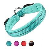 Pumila Einstellbare Hundehalsband Nylon Reflektierend Neopren Gepolstert Verstellbar Halsband Große Kleine Hundehalsbänder Leichtes Welpenhalsband mit Hundelicht -Blau-XL
