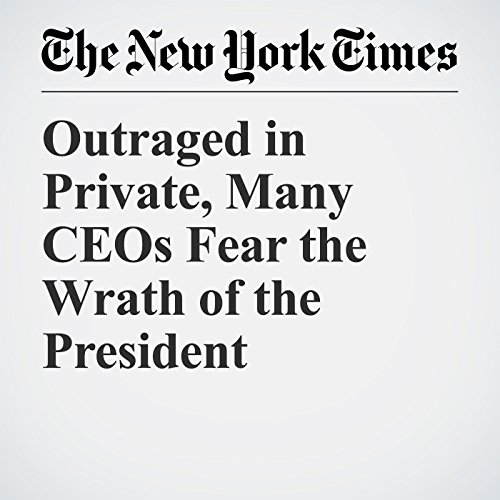 Outraged in Private, Many CEOs Fear the Wrath of the President copertina