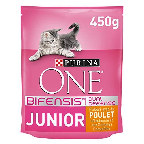 One - Alimento para Gato - Seco - Purina Junior Rico En Pollo Y Con Cereales Integrales 450 g ✅