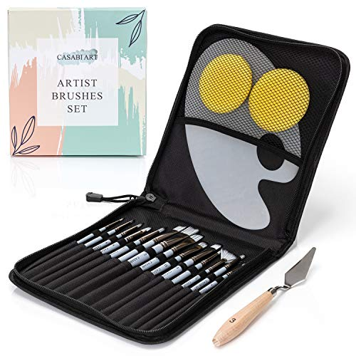 Professional Paint Brushes Set for Acrylic, Gouache, Oil, Watercolor: 15 Art Brushes with One Pallete Knife and Two Sponges in Carrying Case Gift Suitable