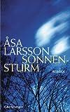 Sonnensturm: Roman (Ein Fall für Rebecka Martinsson 1)