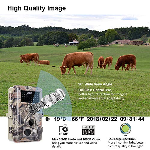 """Meidase Trail Camera 16MP 1080P, Game Camera with No Glow Night Vision Up to 65ft, 0.2s Trigger Time Motion Activated, 2.4"""" Color Screen and Unique Keypad, Waterproof Wildlife Hunting Camera…"""