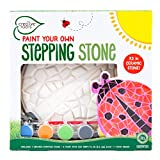 Creative Roots Paint Your Own Mosaic Ladybug Stepping Stone by Horizon Group USA
