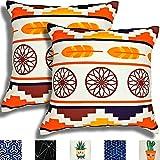 TROOIA Juego de 2 fundas de almohada decorativas con cremallera oculta, diseño único en ambos lados, funda de cojín para sofá, cojín, decoración para salón, 45 x 45 cm (pluma naranja)